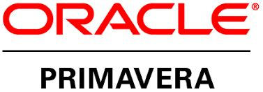 ORACLE DATA MIGRATION - Infosys - Consulting